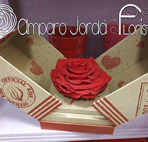 Rosmelia Roja Preservada