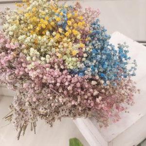 Ramillete Paniculata Multicolor